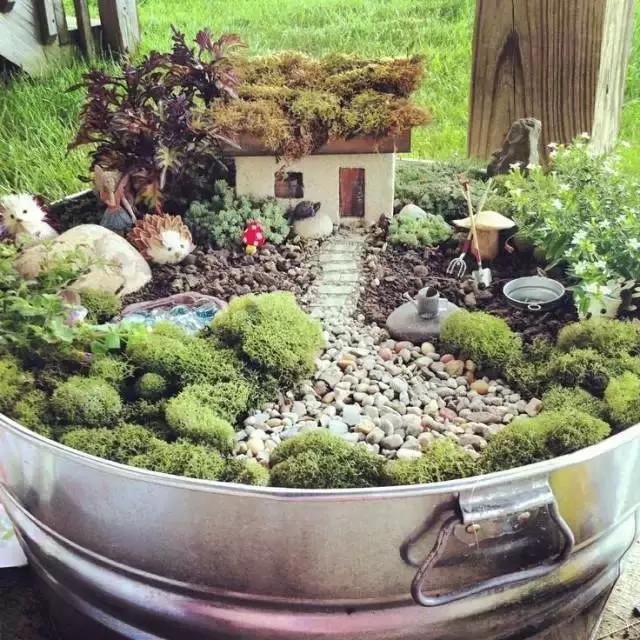 这个漂亮的花园庭院,利用长满青苔的小房子,园林工具,甚至是小动物,给